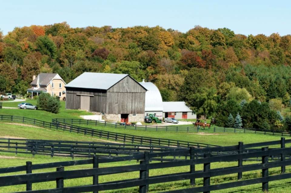 Barn Makeover: Keys to a Successful Renovation